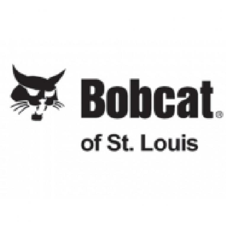 Bobcat_MO